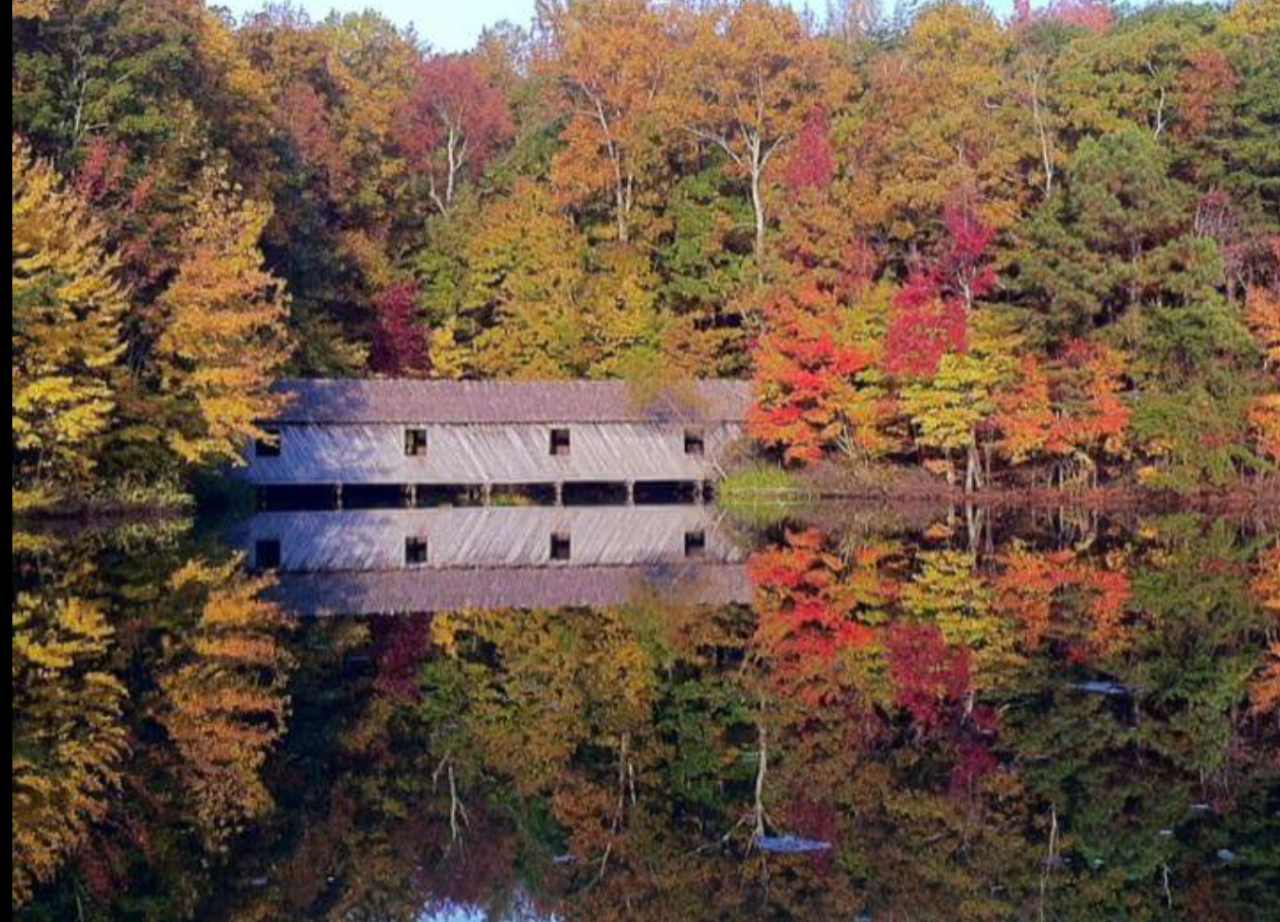 Fall Colors at the Covered Bridge